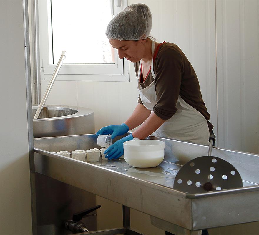 La capra canta piemonte il formaggio di capra biologico for Subito offerte di lavoro torino